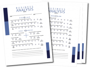 Download the 2020 Business Analysis